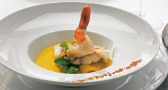 Tafelstern Inspiration Collection chinaware